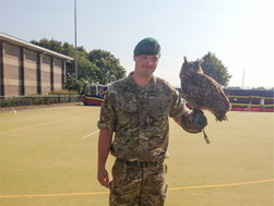 falconry at outdoor events